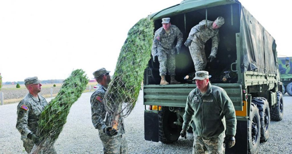 Soldiers loading christmas trees into truck